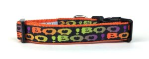 BOO Halloween collar for dogs