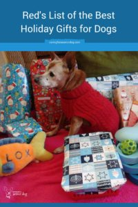 Red's list of the best holiday gifts for dogs