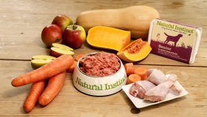 Natural Instinct raw food for senior dogs
