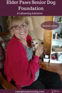 Elder Paws Senior Dog Foundation