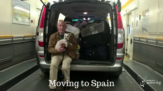 moving to Spain with dogs in the car