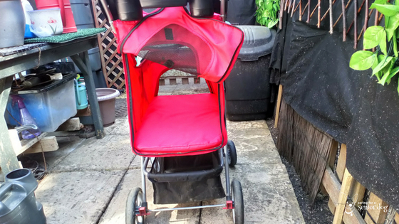 rear entry is a great feature in a pet stroller