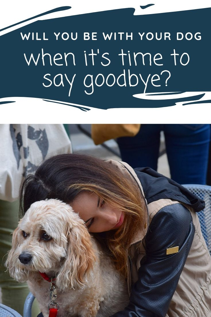 Will You Be With Your Dog When Its Time to Say Goodbye